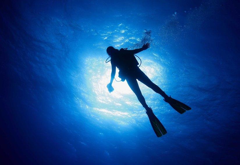 L'immagine di un'immersione