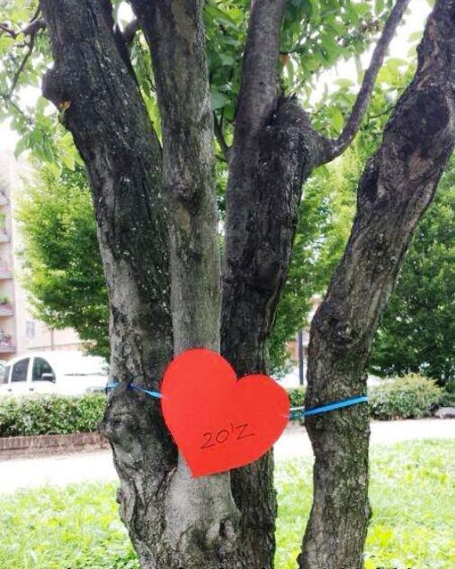 Salvi gli alberi di piazza Tevere