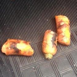 La carota ritrovata nel tubo di scappamento