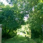 Scorcio del giardino laterale