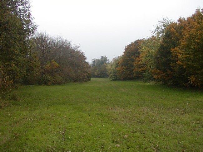 L'area verde di via Gela a San Donato