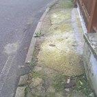 La condizione dei marciapiedi in via Don Minzoni a Bellaria