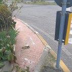 Su questo marciapiede farebbe fatica a camminarvi chiunque