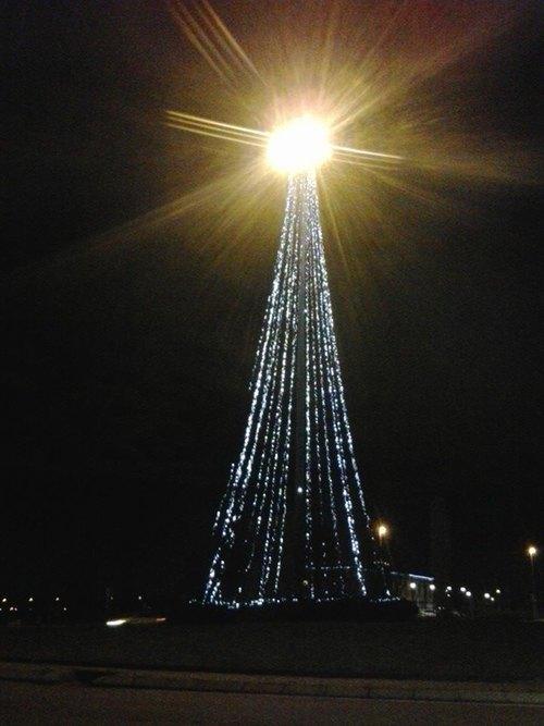 L'albero di Natale illuminato della torre