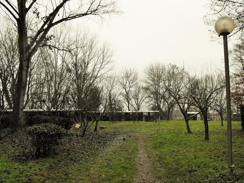 L'ingresso all'area del rifugio che ospita i cani da caccia