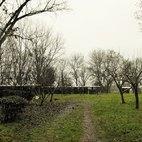 L'ingresso all'area del rifugio che ospita i cani da caccia, sullo sfondo i serragli
