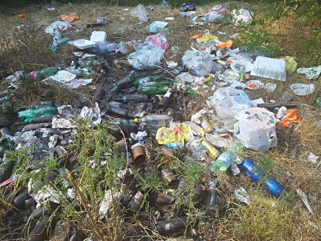 Spazzatura abbandonata nei campi intorno a Zelo Buon Persico