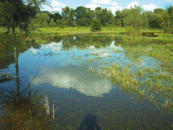 L'oasi Levadina a San Donato Milanese