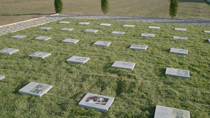 Il Cimitero per animali d'affezione