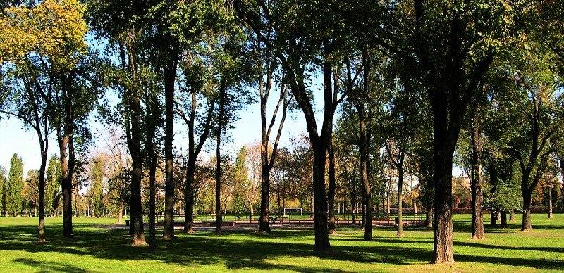Parco di Trenno, Milano