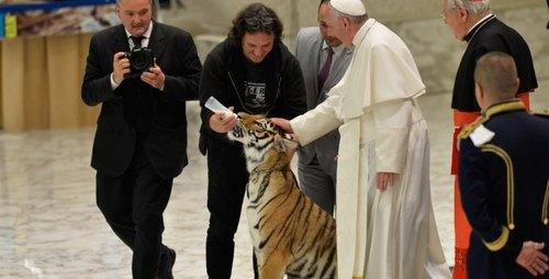 Papa francesco mentre accarezza il cucciolo di tigre