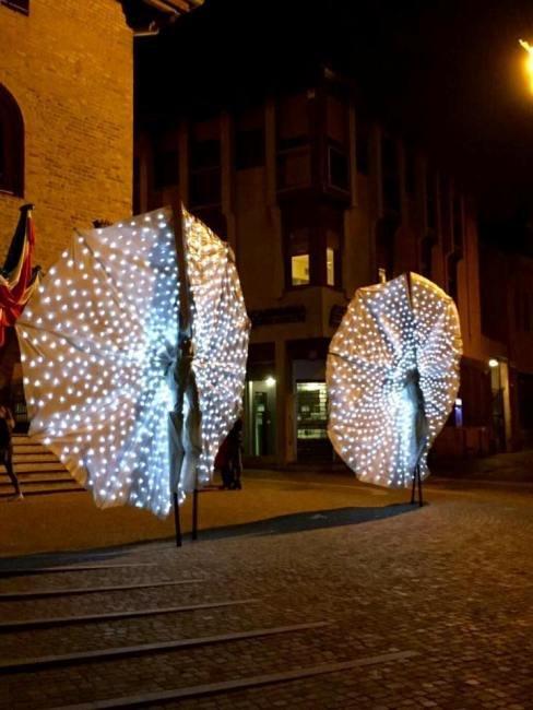 Le farfalle luminose