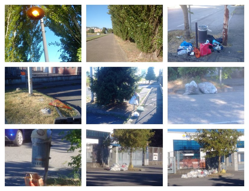 Un collage delle foto inviate dal lettore