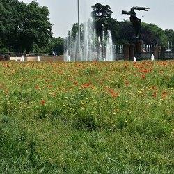 Il Parco di Largo Marinai D'Italia a Milano
