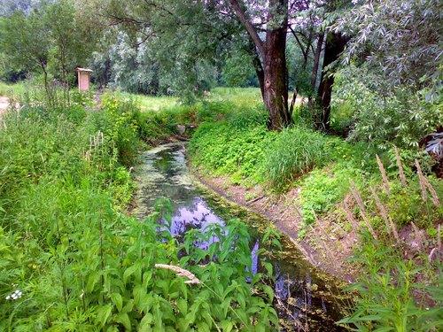 L'oasi Levandina