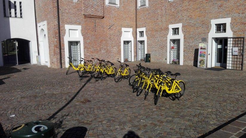 L'esercito di biciclette pronto a riposo