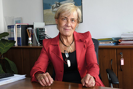 Annalisa Sala, Direttore ALDAI