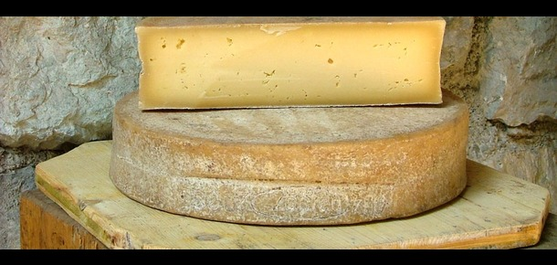 Bitto Cheese from Valtellina