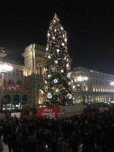 Albero Di Natale Milano.L Albero Di Natale Messaggio Di Pace E Speranza Cronaca Vivere
